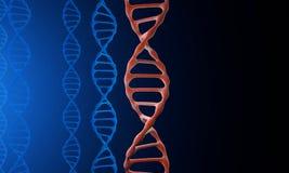 Baumuster 3D von DNA Lizenzfreies Stockbild