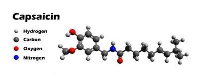 Baumuster des Capsaicins 3D Lizenzfreies Stockbild