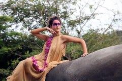 Baumuster und Elefant. lizenzfreie stockfotografie