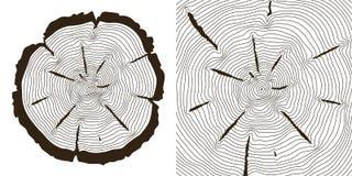Baumwachstumsringe, Sägestamm schneidet Vektorillustration Stockfotos