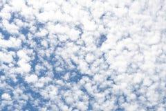 Baumwolle mag bewölkten blauer Himmel-Hintergrund Stockfoto