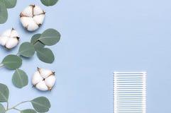 Baumwollkosmetische Make-upentferner-Tampons Seifen-, Tuch- und Blumenschneegl?ckchen Flacher gelegter Hintergrund mit Baumwollbl lizenzfreie stockfotografie