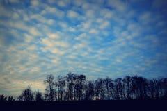 Baumwollwolken Stockfotografie