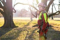 Baumzüchtermänner, die gegen zwei große Bäume stehen Die Arbeitskraft mit dem Sturzhelm, der auf Höhe auf den Bäumen arbeitet Hol Stockfotografie
