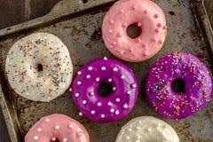 Baunilha cozida fresca Bean Iced Doughnuts Foto de Stock