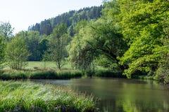 Bautiful weinig meer in de natuurlijke reserve Schönbuch stock fotografie