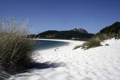 bauty пляж Стоковые Изображения