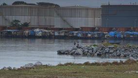 Bauxietalumina opslagtanks, Conakry, Guinea stock footage