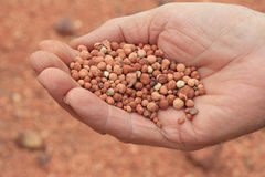Bauxite in hand. A close-up photo of bauxite in a mans hand Stock Photos