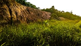 Bauxite hill located on the island of Batam stock photography
