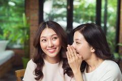 Bavardage de deux filles Secret de chuchotement de jeune femme attirante dedans Images libres de droits
