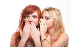 Bavardage de société - deux jeunes amies heureuses parlant le backg blanc Photos libres de droits