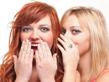 Bavardage de société - deux jeunes amies heureuses parlant le backg blanc Images libres de droits