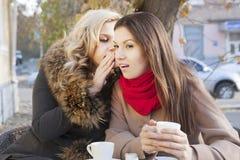 Bavardage et café d'amies Photos libres de droits