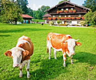 Bavaria. Typical bavarian farmhouse near rosenheim/germany Stock Photography