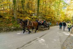 Bavaria, Germany - October 15, 2017:  Tourists riding in horse c Royalty Free Stock Photography