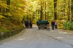 Bavaria, Germany - October 15, 2017:  Tourists riding in horse c Stock Images