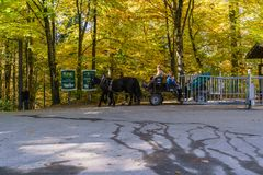Bavaria, Germany - October 15, 2017:  Tourists riding in horse c Stock Image