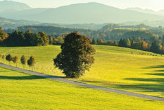 Bavaria land in Germany in autumn season Stock Photo