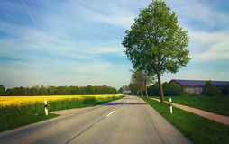 Bavaria - springtime, road among fields with barn, tree and yell Stock Photos