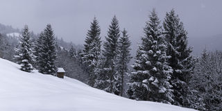 Bavaria. Winter on the ski slopes, Garmisch-Partnekirchen Stock Photography