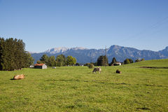 Bavarian alps Stock Images