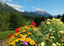 Bavarian alps Stock Image
