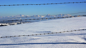 The Bavarian Alps Stock Images