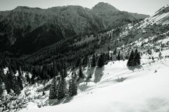 Bavarian Alps in Winter Royalty Free Stock Photography