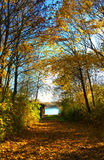 Bavarian autumnal landscape, countryside path to a lake Stock Photo