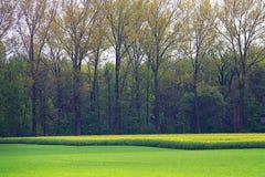 Bavarian countryside spring landscape Stock Images
