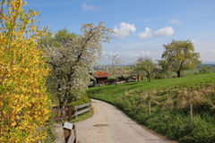 Bavarian countryside at springtime Stock Photos