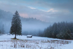 Bavarian countryside in winter Royalty Free Stock Photography