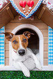 Bavarian dog house Royalty Free Stock Images