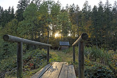 Bavarian Forest. During Fall time Royalty Free Stock Photos