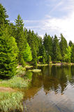Bavarian Forest - Germany Stock Image