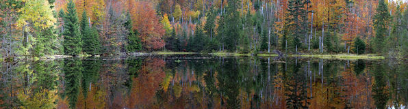 Bavarian Forest Panorama. Martins Klause lake in the Bavarian Forest Royalty Free Stock Photos