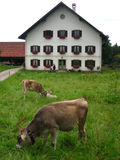Bavarian Home Stock Photography
