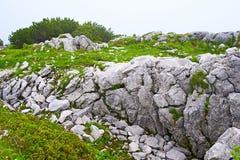Bavarian landscape Royalty Free Stock Image