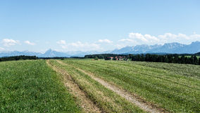 Bavarian landscape and Alps Royalty Free Stock Images
