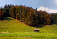 Bavarian landscape in autumn Royalty Free Stock Photo