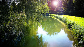 Bavarian landscape, quiet pond with tree reflections in back lig Stock Images