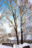 Bavarian landscape on winter with snow Royalty Free Stock Images