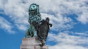 Bavarian Lion stock video footage
