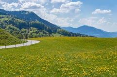 Bavarian Mountain Stock Image