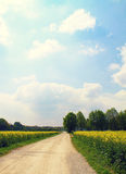 Bavarian rural landscape in spring Royalty Free Stock Images