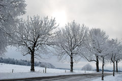 Bavarian winter Royalty Free Stock Photography