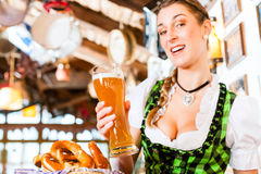 Bavarian woman drinking wheat beer Royalty Free Stock Images