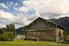 bavarian woodpile zdjęcie stock