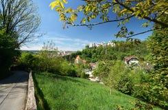 Bavarian Woods Royalty Free Stock Photography
